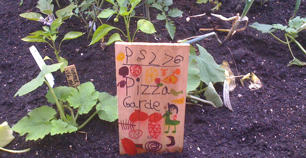 Battery park city picture of the day p s 276 pizza Garden city pizza