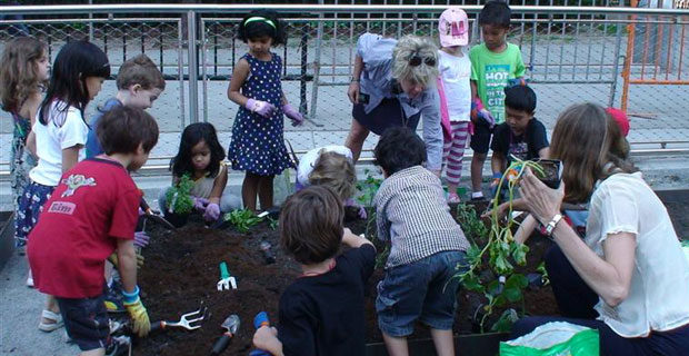 P.S. 276 plants their pizza garden (bpcschool.org)