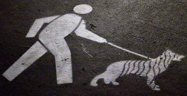 battery-park-city-dog-leash-law
