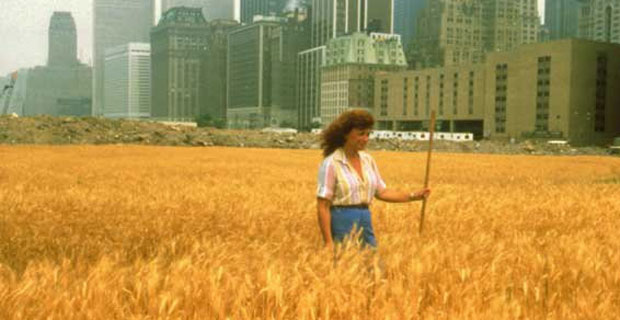 Battery Park City Agnes Denes Fields of Wheat 1982
